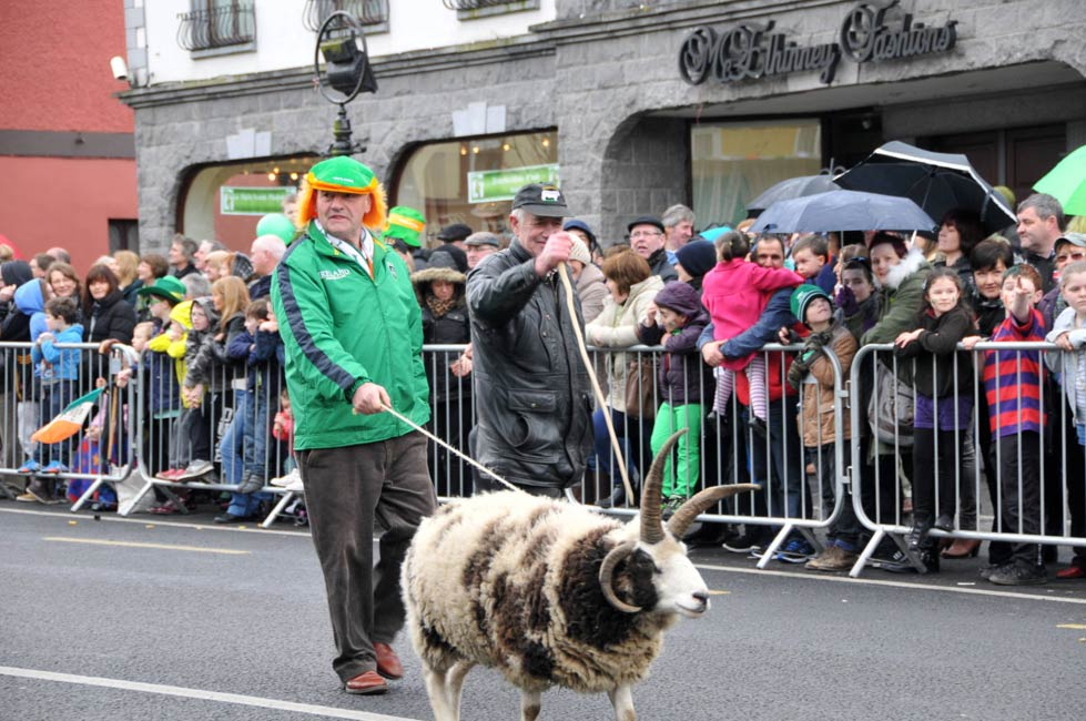 athboy-st-patricks-day-parade-2014 (334).jpg